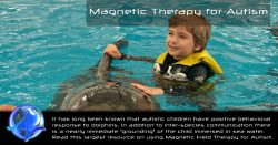 Magnetic Therapy Autism – Frequency Specific Pulsed Electromagnetic Field (PEMF) Therapy Research