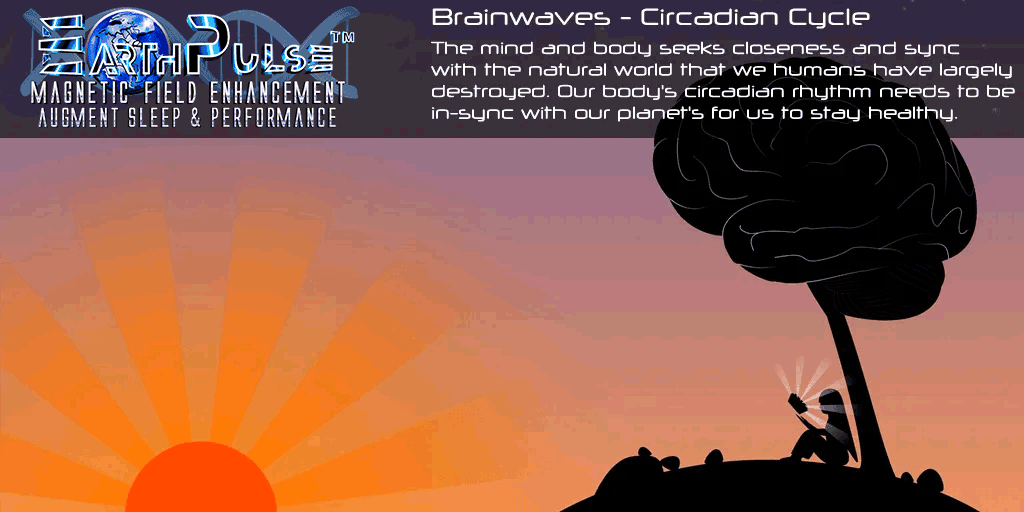 Circadian Cycle - Rhythm - Brainwaves - Sleep Disorder