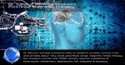 PicoTesla Magnetic Therapy Sandyk R. Research Bibliography