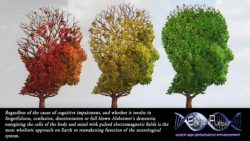Magnetic Therapy Alzheimer's; Pulsed Electromagnetic Field Therapy PEMF Bibliography